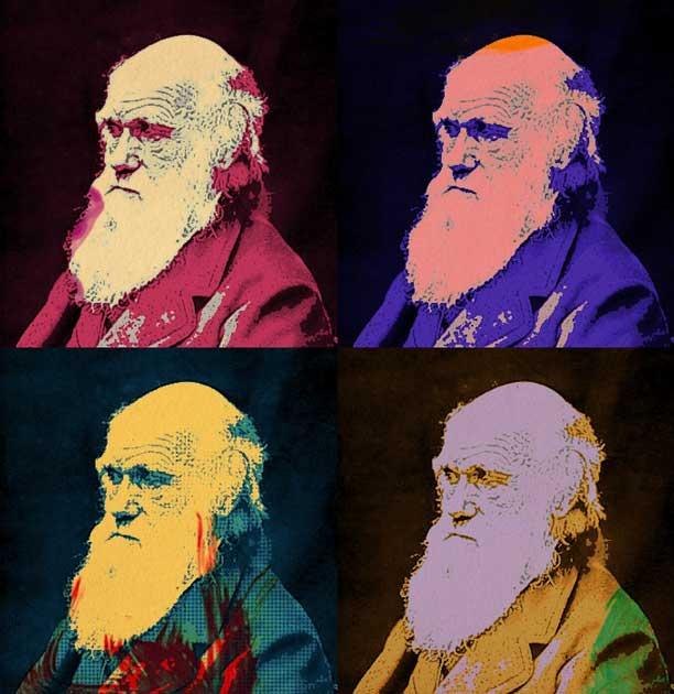 DarwinModern